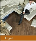 Cheap Quickstep Eligna
